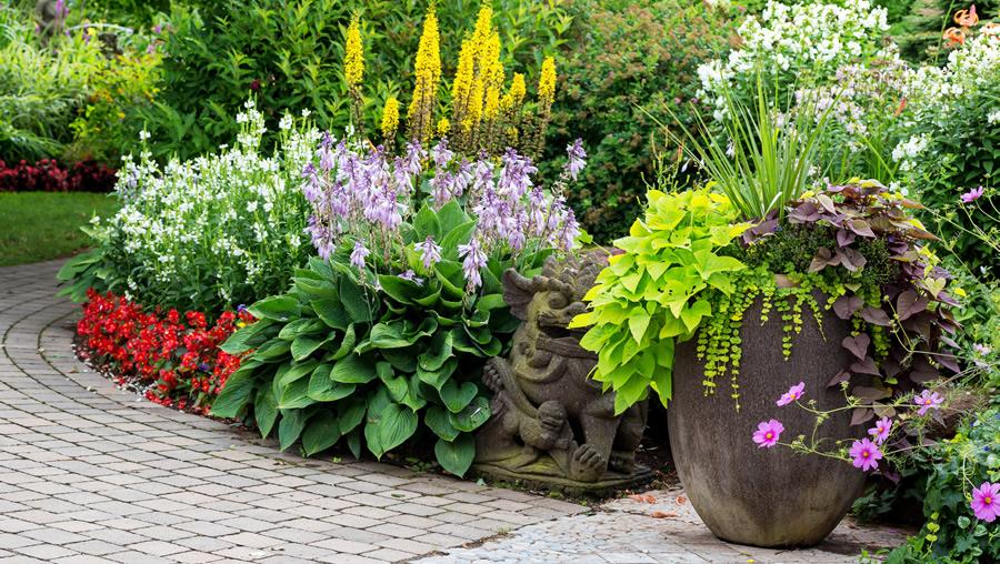 Get Your Summer Garden In Shape