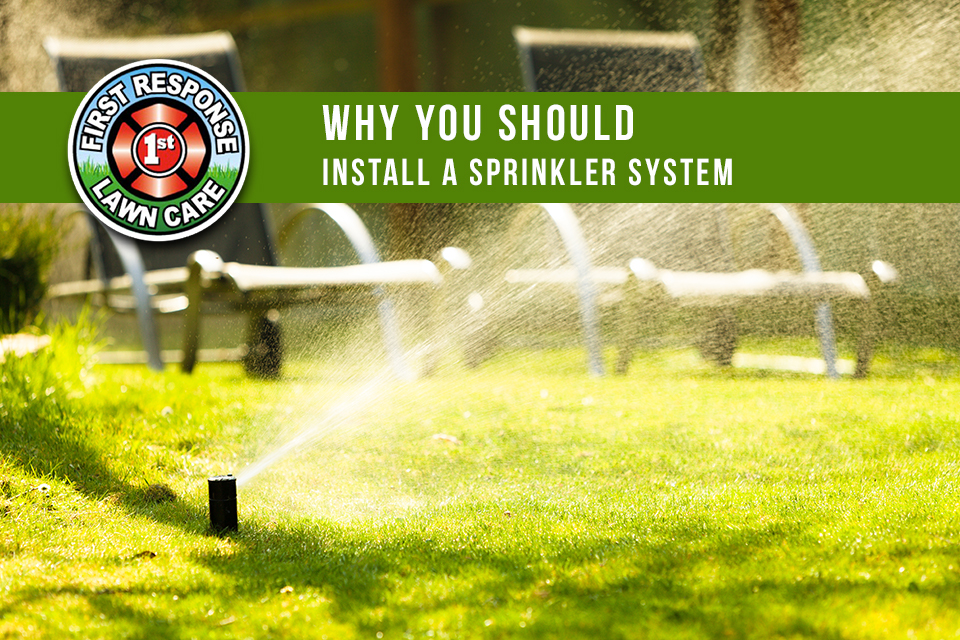 Why You Should Install a Sprinkler System