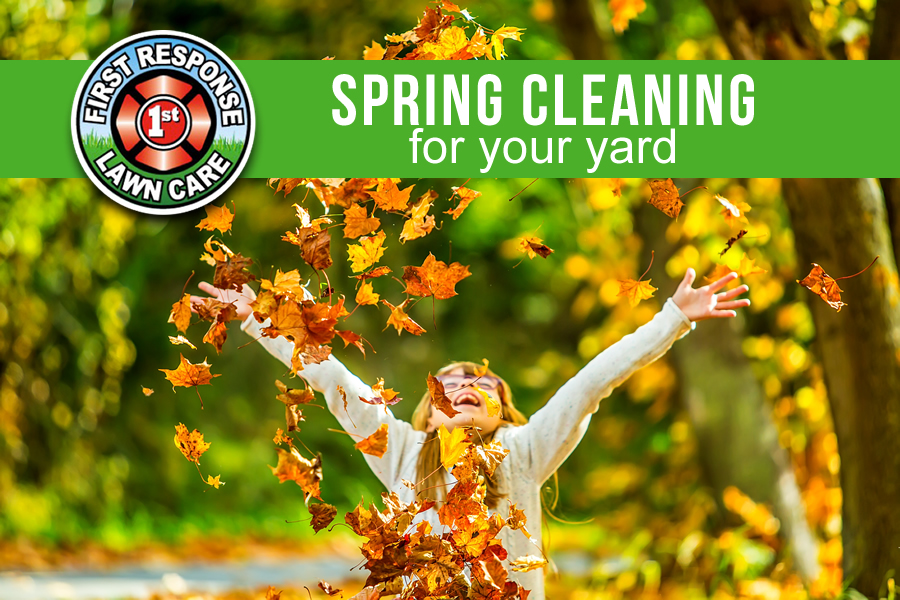 spring cleaning for your yard