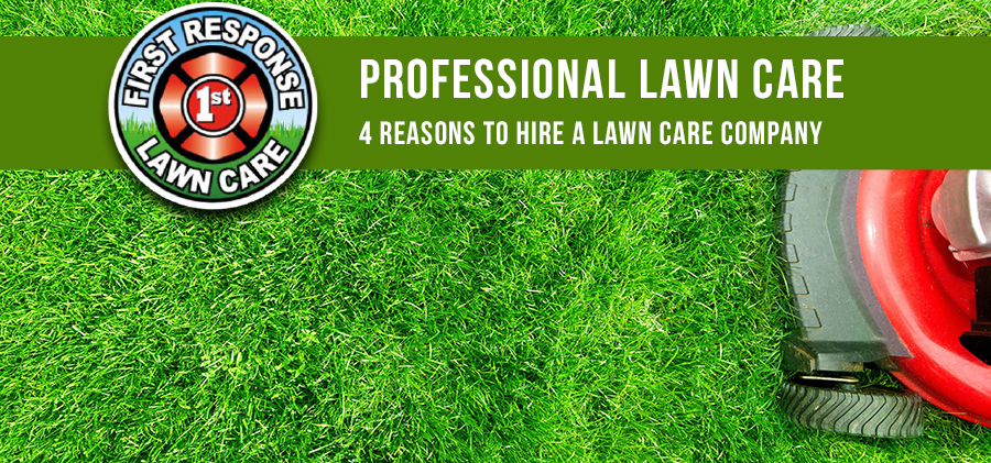 4 Reasons to Hire a Lawn Care Company