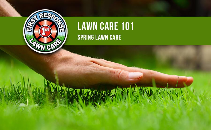 Lawn Care 101, Spring Lawn Care
