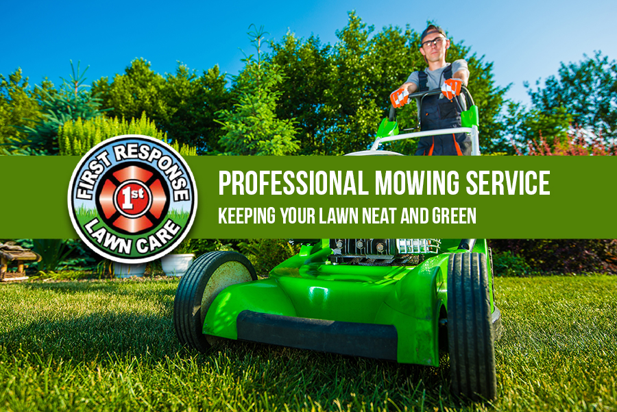 Professional Mowing Service