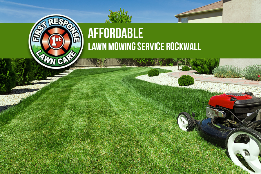 Affordable Lawn Mowing Service Rockwall