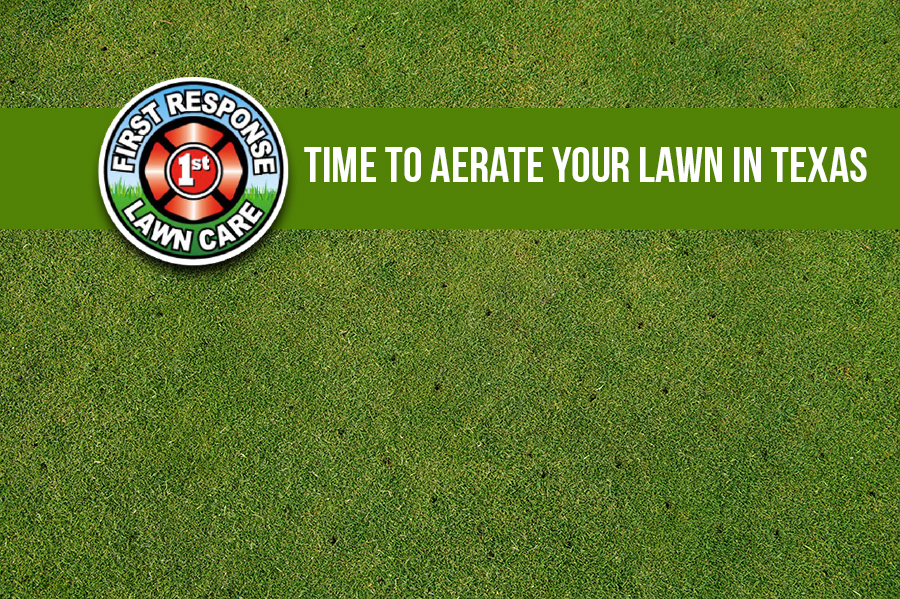 Time to Aerate Your Lawn in Texas