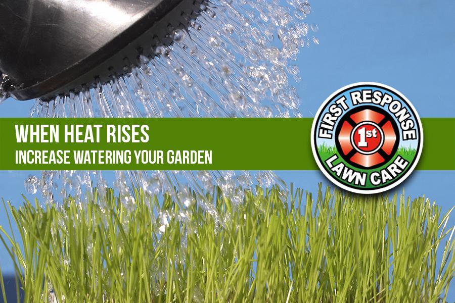 When Heat Rises Increase Watering Your Garden