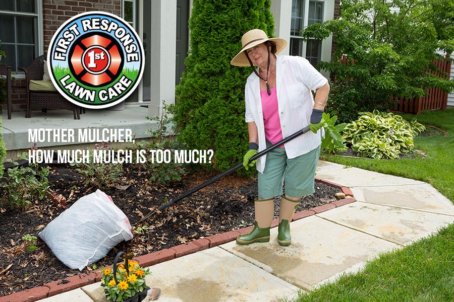 Mother Mulcher, How Much Mulch is Too Much?