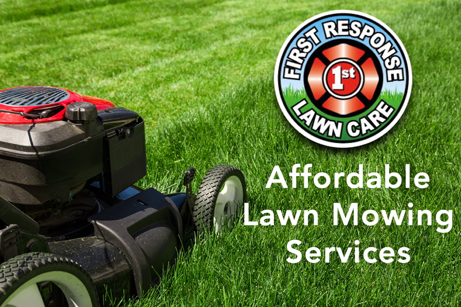 affordable fate texas lawn mowing service