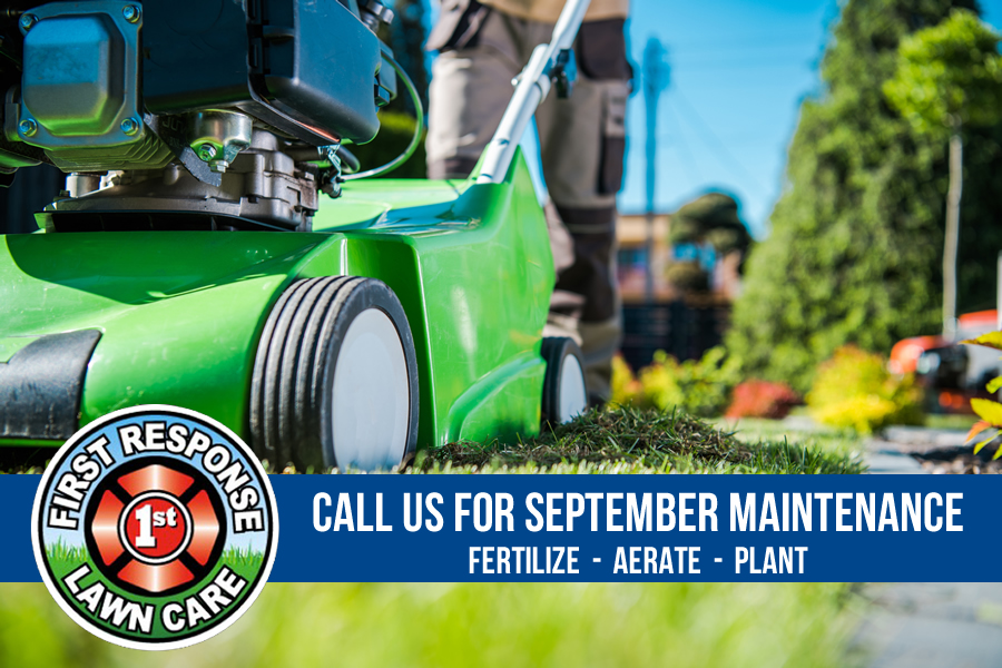 September Lawn Maintenance for North Texas
