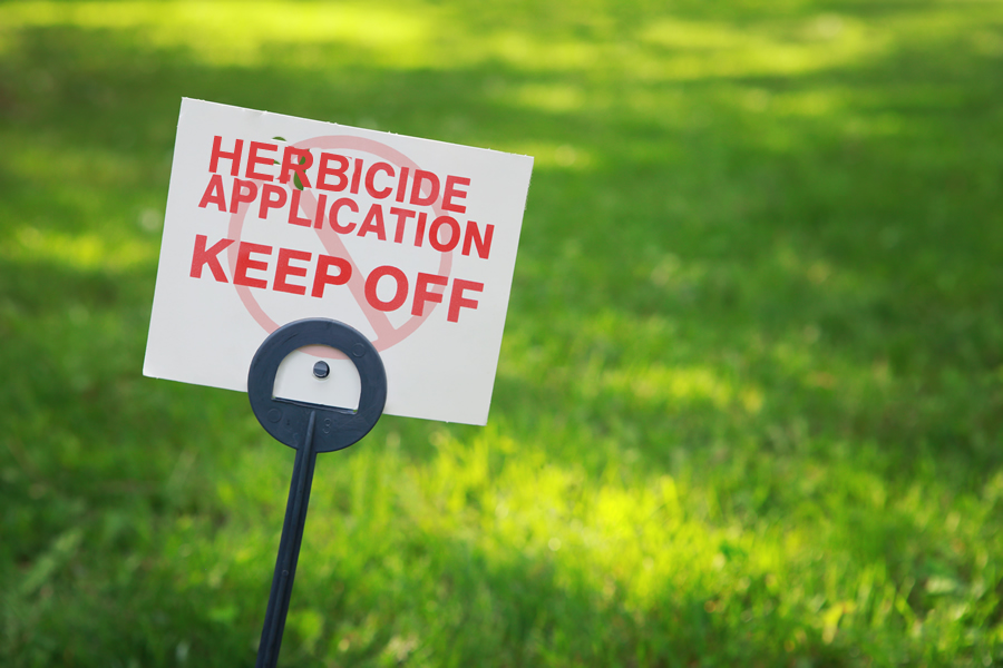 Now is the Time for Herbicide Treatment on Texas Lawns