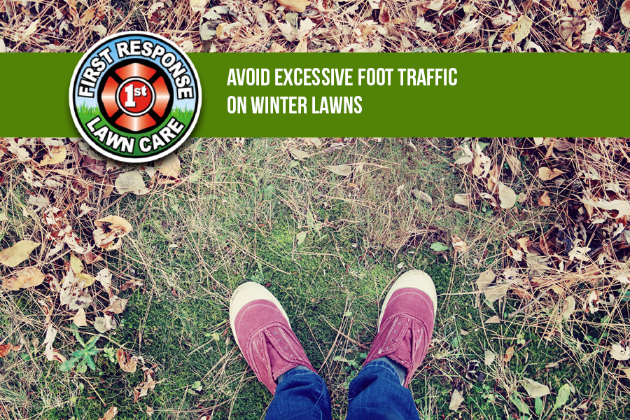 Avoid Excessive Foot Traffic On Winter Lawns