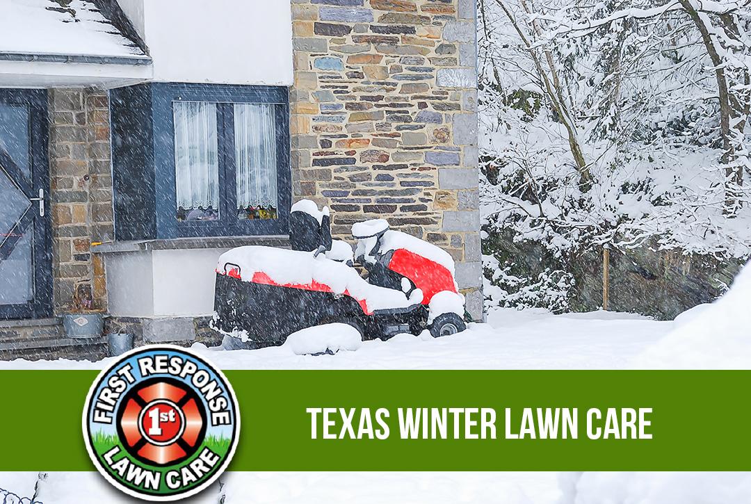 Texas Winter Lawn Care