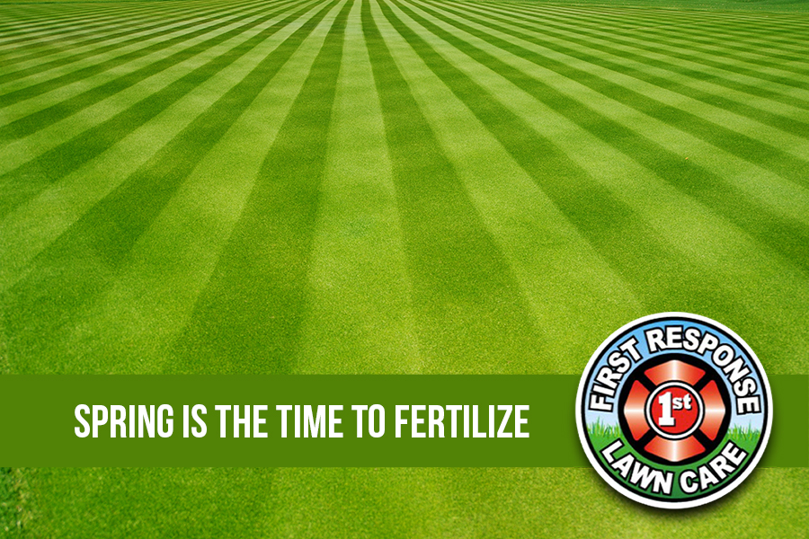 Spring is The Time to Fertilize