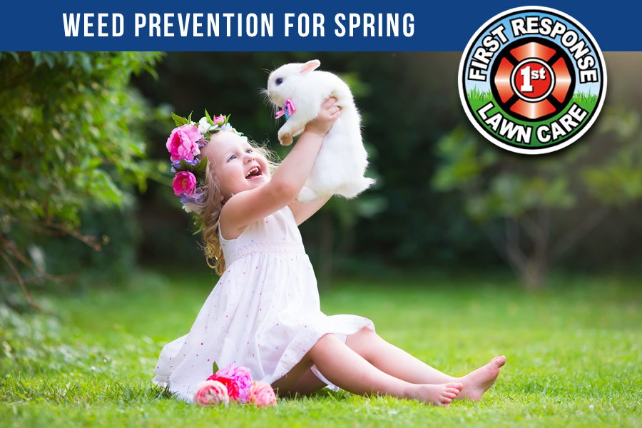Weed Prevention for Spring