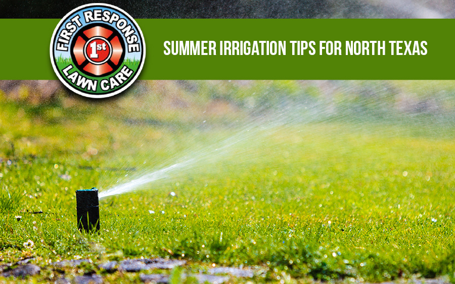 Summer Irrigation Tips for North Texas