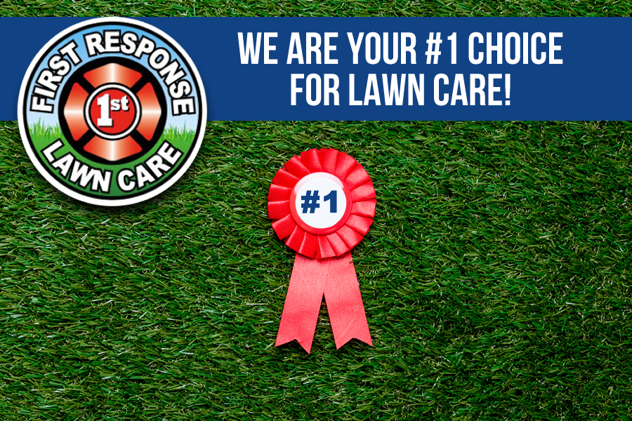 Why We Are the Best Lawn Company