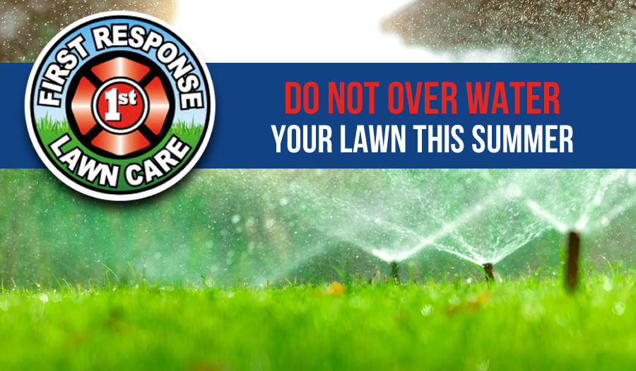 over watering lawn