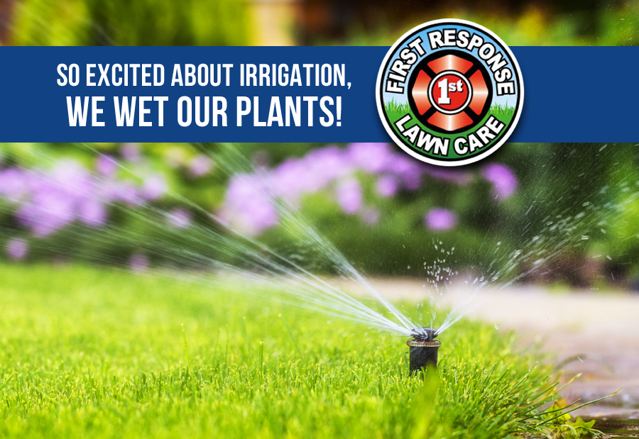 So Excited About Irrigation, We Wet Our Plants!